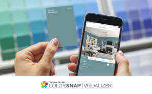 Color Snap By Sherwin Williams Paint Company